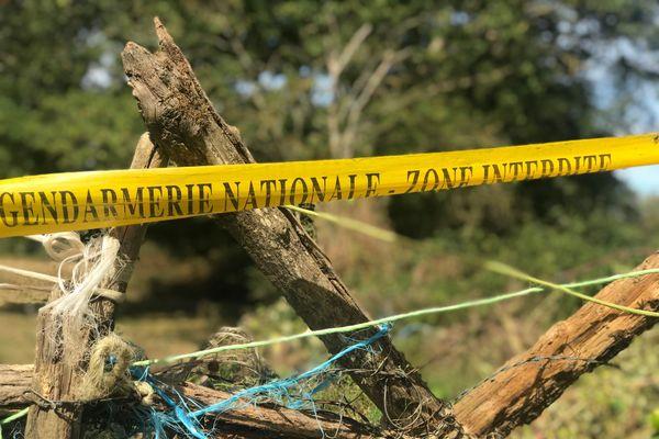 Un bandeau de la gendarmerie nationale bloque l'accès au pré dans lequel la jument mutilée a été découverte.