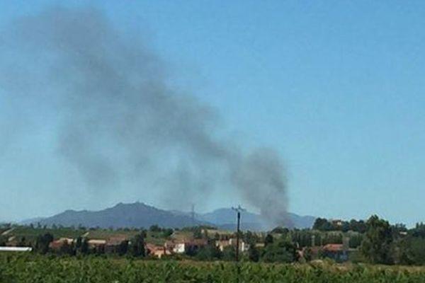 Incendie au Soler, dans les Pyrénées-Orientales - 22 août 2016.