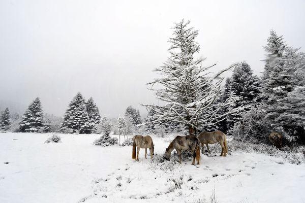Des chutes de neige précoces se sont produites sur le massif des Pyrénées dès le mois de septembre. Photo d'archive.
