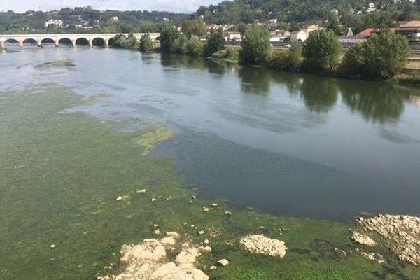 Face à la sécheresse de nouvelles restrictions d'eau ont été établies par la préfecture le 11 septembre dernier.