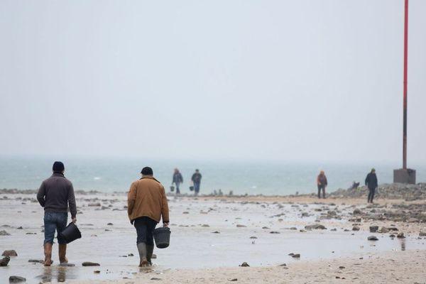 Les forts coefficients des marées sont propices à la pêche à pied.
