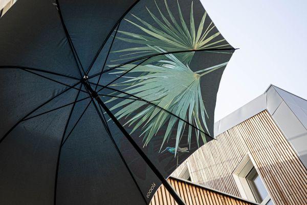 Klaoos lance sa première gamme de parapluies