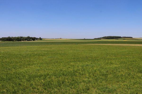 L'ancien champ d'aviation d'Audembert.