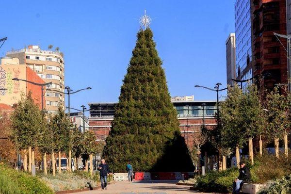 Le sapin géant est installé sur les allées Jean Jaurès à Toulouse