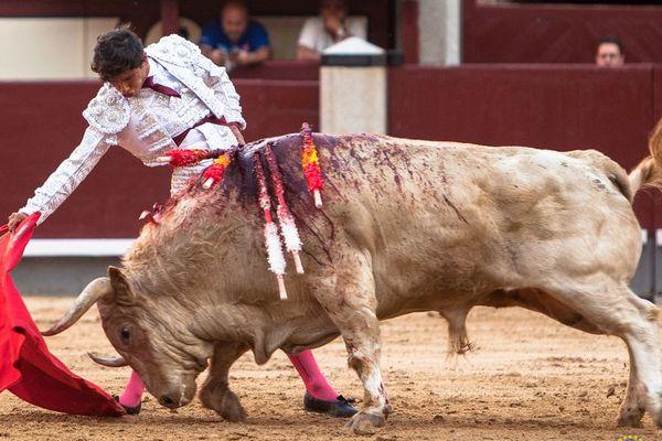 """Madrid, 17 mai 2018. Luis David Adame ne se range pas parmi les toreros """"artistes"""". Mais il a tiré le meilleur parti d'un bon toro de Juan Pedro, Ombú."""