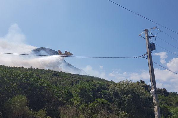 15/06/17 - Canadair en intervention sur la commune d'Alata (Corse du Sud)