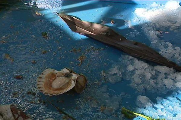 A 11 Heures, sous la halle aux poissons certains étales étaient déjà vides !