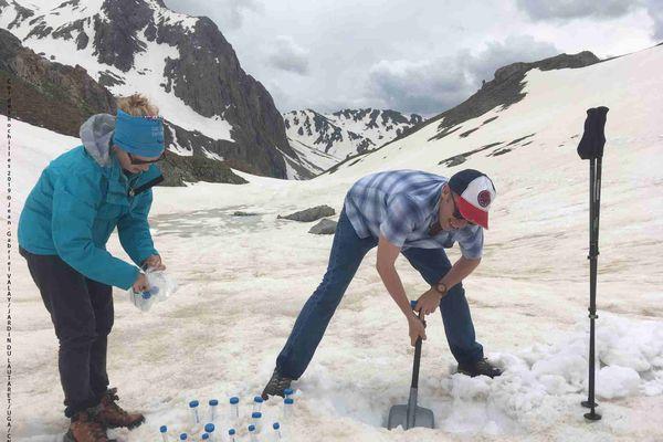 Des prélèvements des micro-algues qui colorent la neige ont été effectué sur 5 sites alpins.