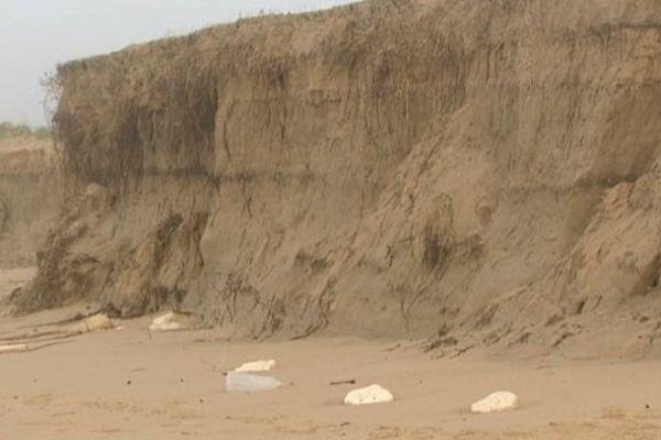 Sur l'île d'Oléron, les côtes ont, par endroits, reculé de 60 mètres.