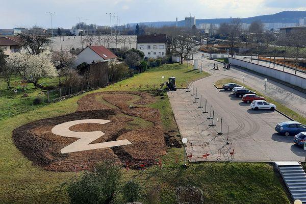 Micro-forêt urbaine à France 3 Lorraine