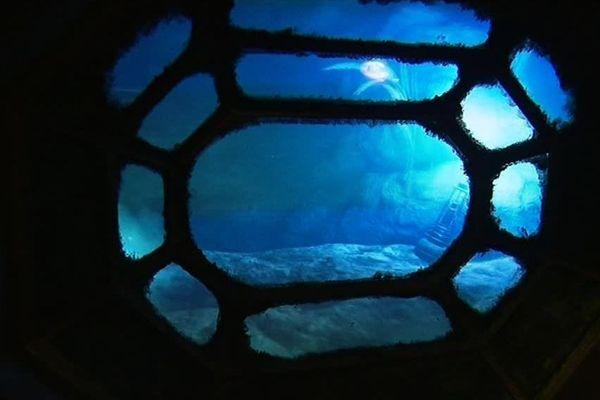 Il pleut pendant les vacances de Toussaint à Montpellier ? C'est le moment d'embarquer dans un tout nouveau sous-marin et d'aller explorer des abysses virtuelles à sa barre, bien réelle, elle ...