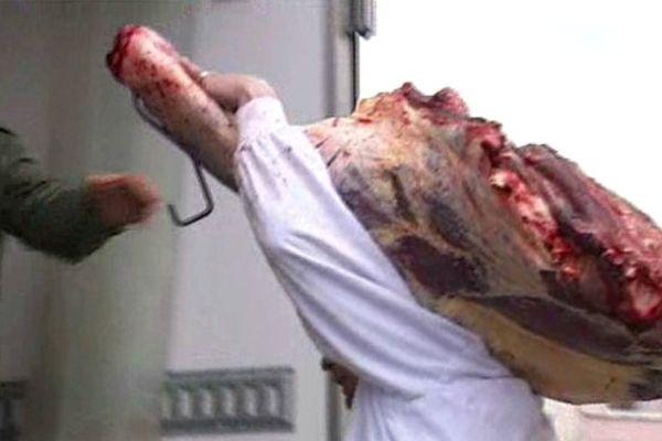 Des carcasses de viande de cheval ont été saisies pour analyse par les enquêteurs, à Narbonne dans l'Aude - 16 décembre 2013