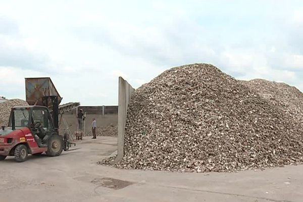 L'entreprise Ovive, installée à Périgny (17), est spécialisée dans le broyage des coquilles d'huîtres pour l'alimentation des poules
