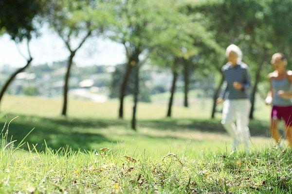 Jogger en pleine nature, c'est interdit dans toute l'Alsace jusqu'au 15 avril