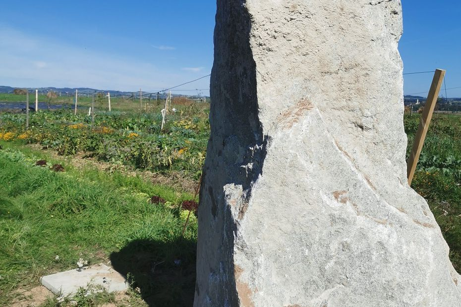 """Loire : """"J'avais besoin de nettoyer les énergies pour me sentir chez moi"""", Barbara a installé un menhir dans son jardin"""