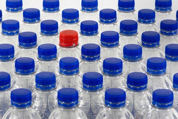 Les bouteilles en plastique redeviennent bouteilles ou sont transformées en fibre polaire