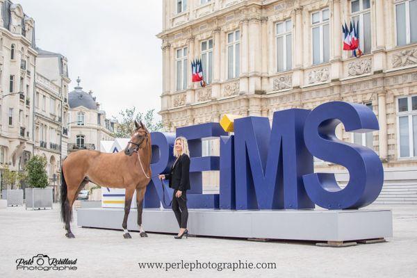 Séance photo avec une jument devant l'Hôtel de Ville de Reims, le samedi 29 août.