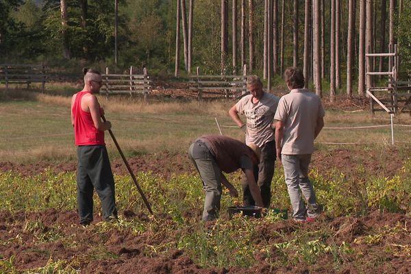 Les apprentis agriculteurs viennent d'horizons professionnels bien différents.
