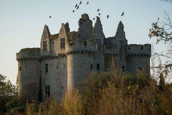 Le château fort de l'Ébaupinay est situé dans le nord des Deux-Sèvres.