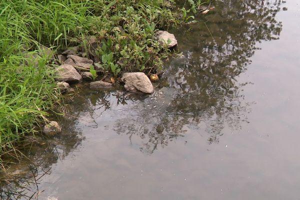 Les prélèvements peuvent être interdits dans certains cours d'eau en période de sécheresse.