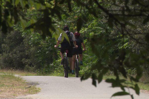 Deux cyclistes en forêt domaniale de la Coudre, à côté de Royan.