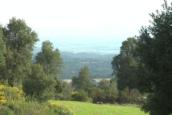 Unprojet de parc éolien est à l'étude en Catalogne. Une trentaine de mâts de plus de 150 mètres de haut que des riverains et des maires voient d'un très mauvais oeil au regard des richesses naturelles, géologiques, patrimoniales de ce secteur des Albères.