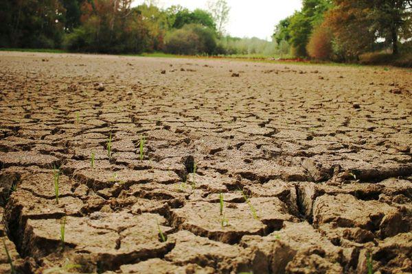 La sécheresse est très préoccupante en Creuse