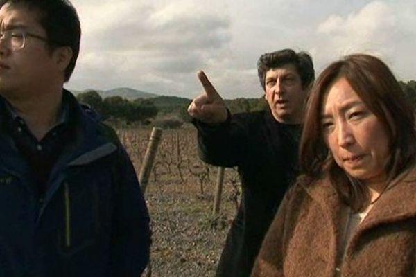Des sommeliers sud-coréens à la découverte des vins du Roussillon, dans les P.O