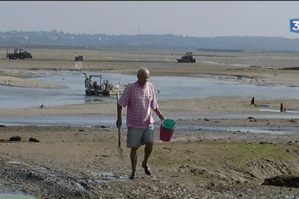 Pas de pêche à pied autorisée officiellement.
