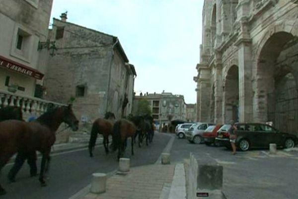 """Les """"Alter réal"""" découvrent les arènes d'Arles"""