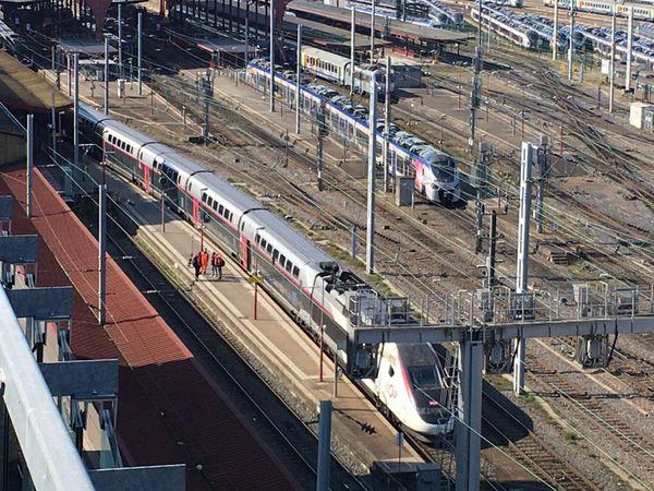 Le TGV médicalisé, sur le quai 1 de la gare de Strasbourg, jeudi 26 mars