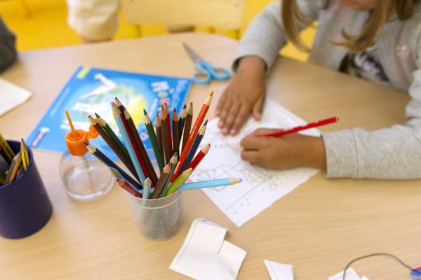 Les colonies de vacances proposées par la Ligue de l'enseignement de Haute-Saône permettront aux enfants d'aborder des notions scolaires le matin et de pratiquer différentes activités divertissantes l'après-midi.