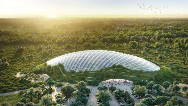 Voici à quoi pourrait ressembler Tropicalia, que les promoteurs espèrent boucler d'ici deux ans et demi.