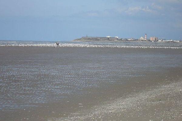 Les deux promeneurs voulaient rejoindre Berck-sur-Mer à pied