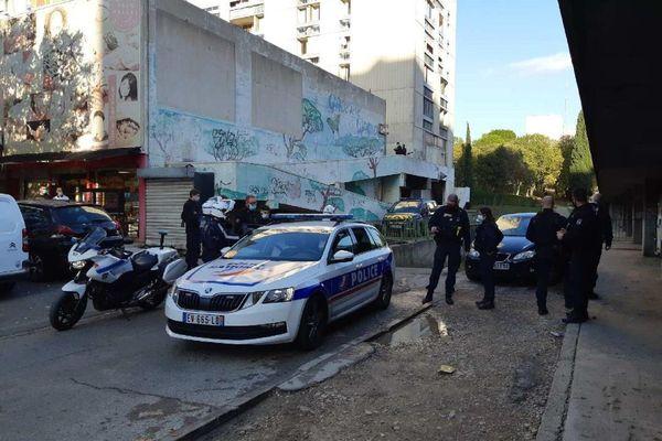 69 contrôles ont été menés dans le quartier Pissevin-Valdegour à Nîmes de 15 à 16h30 ce 10 novembre.