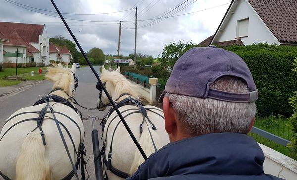 Didier Pecquart, accompagné de ses deux juments Havane et Calina, à l'entraînement à Hucqueliers en vue de participer à la Route du Poisson.