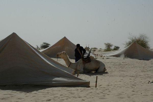 Caravane du festival au désert /Ali Farka Touré