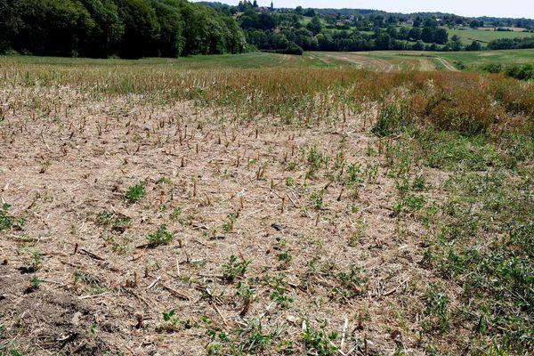 La sécheresse a touché les habitations et les sols. Photo d'illustration