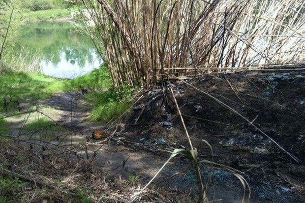 Le lieu de la découverte de la voiture calcinée près de Remoulins (30) au bord du gardon - mars 2014