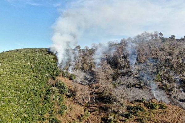Le feu s'est déclaré dans les hauteurs de Loreto-Di-Casinca