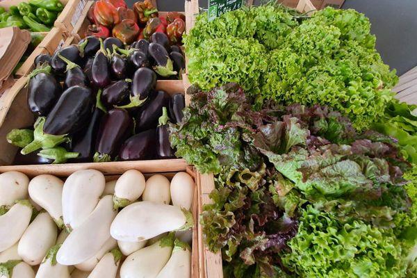 Les légumes des Jardins de Paradis.