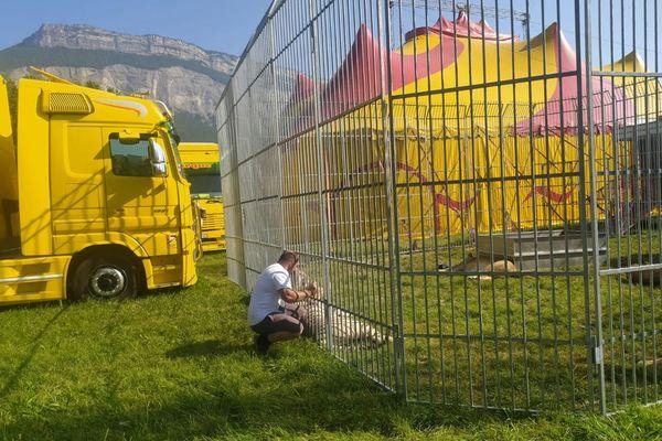 L'installation du cirque Franco-Belge fait polémique à Meylan, la municipalité s'opposant à la présence d'animaux en captivité.