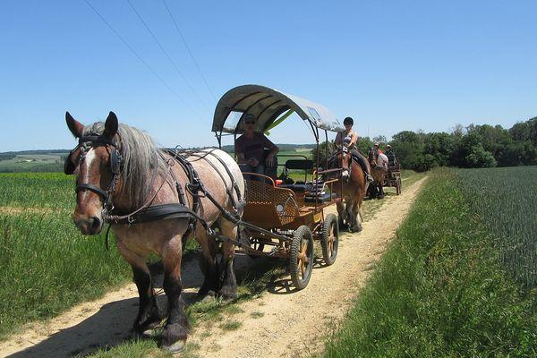 Au beaux  jours, on peut partir à la découverte de la campagne ardennaise.