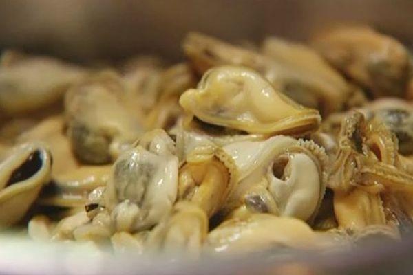 """Le gisement naturel dit """"de Barfleur"""" est le plus important de France. Les moules sont réputée pour leur leur couleur blonde et leur saveur délicate."""