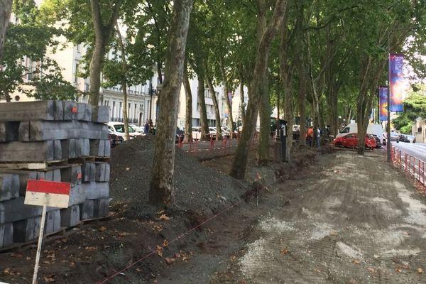 Les riverains sont très attachés aux grands alignements de platanes des boulevards Béranger et Heurteloup. Après le passage de l'expert, tout est remis en place, les trous sont soigneusement rebouchés.