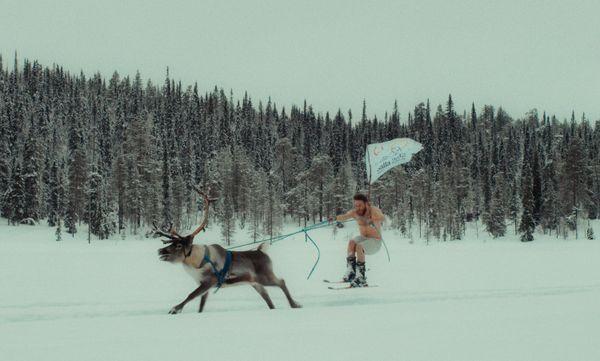Le Renne, animal sacré en Laponie, est la mascotte des JO