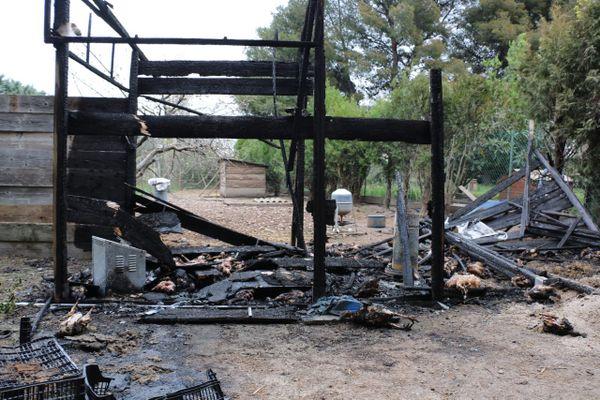 A Gignac-la-Nerthe (Bouches-du-Rhône), un incendie criminel détruit un poulailler, une centaine de poulets grillés vifs.