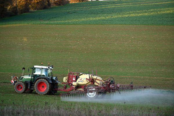 Un agriculteur épandant des pesticides sur ses cultures, en novembre 2020 (photo d'illustration).