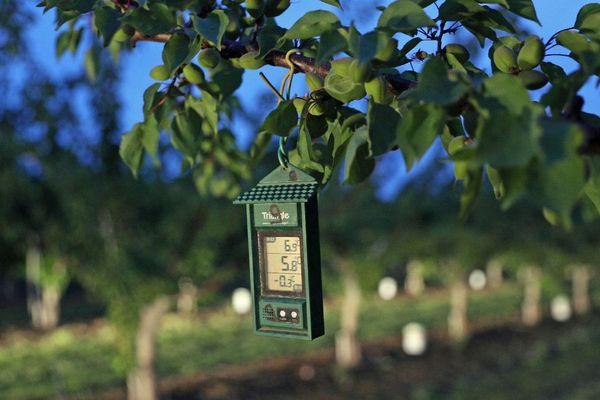 La température, donnée importante pour le jardinage