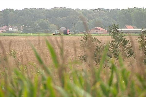 Les pesticides issus de l'agriculture sont mesurés des Flandres jusqu'à Lille